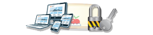 Website Security Malaysia
